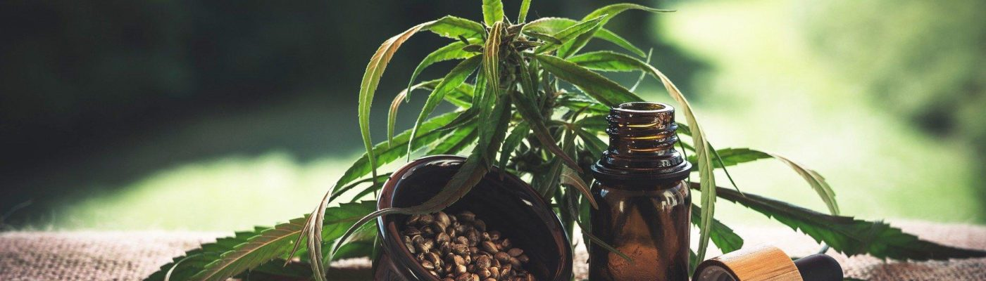 An In-Depth Look at the Little-Known Benefits You May Get from CBD Oil